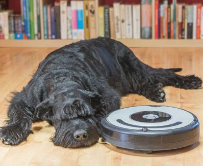 importance of robot vacuum cleaner