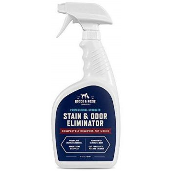 pet stain and odor removers/pet stain and odor remover
