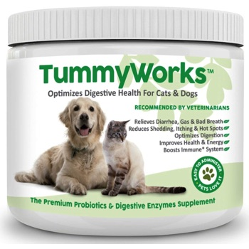 tummy works for dogs