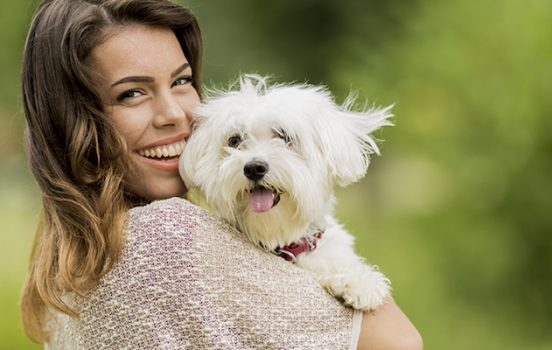 How to Choose the Perfect Dog Multivitamin
