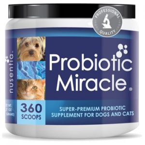 probiotic miracle for dogs