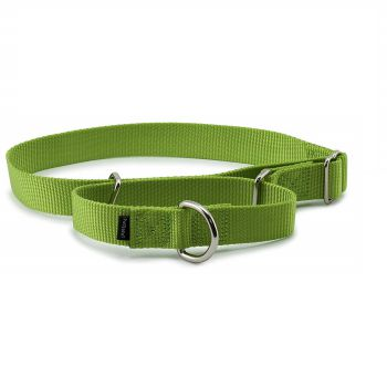PetSafe Petite Martingale Best Dog Collar