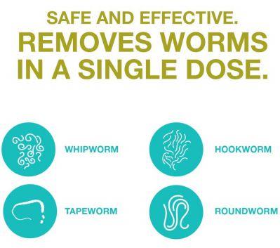 safeguard 4 canine dewormer reviews