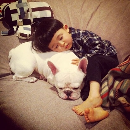 baby and a dog sleeping on a couch