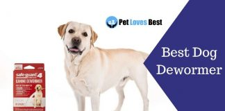 Best Dog Dewormer Featured Image
