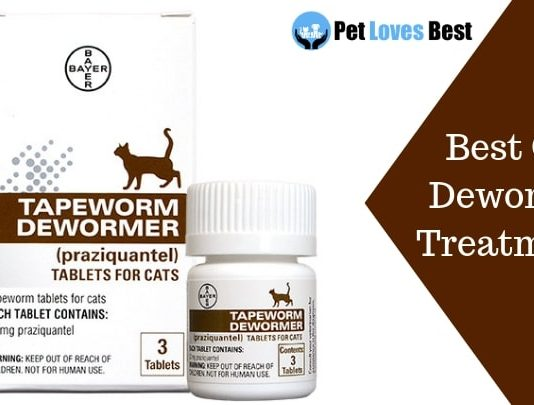 Featured Image Best Cat Dewormer Treatments