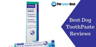 Featured Image Best Dog ToothPaste Reviews