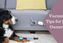 Featured Image Vacuum Tips for Pet Owners