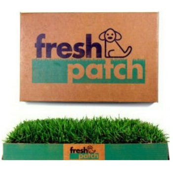 Fresh Patch Indoor Dog Potty System with Real Grass
