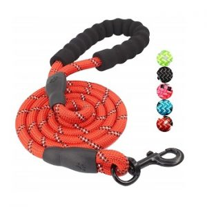 Baapet Strong Dog Leash