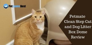Featured Image Petmate Clean Step Cat and Dog Litter Box Dome Review