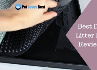 Featured Image Best Dog Litter Box Reviews