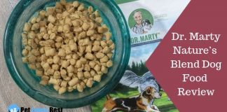 Featured Image Dr. Marty Nature's Blend Dog Food Review