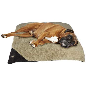 ALL FOR PAWS Lambswool Large Size Pillow Bed for Dogs