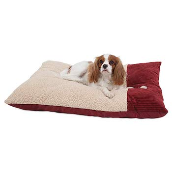 Aspen Pet Self Warming Dog Pillow Beds
