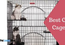 Best Cat Cages Featured Image