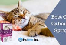 Best Cat Calming Spray