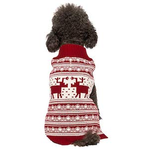 Best Dog Sweater for Christmas
