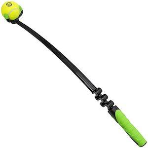 dog ball thrower
