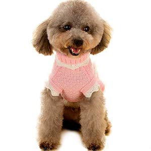 Joytale Turtleneck Flower Studded Dog Sweater