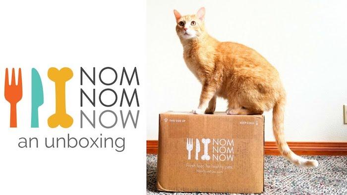 NomNomNow Reviews of Cat Food