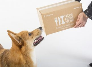 NomNomNow Fresh Dog Food Delivery Service Review