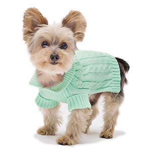 Best Sweater for small dogs