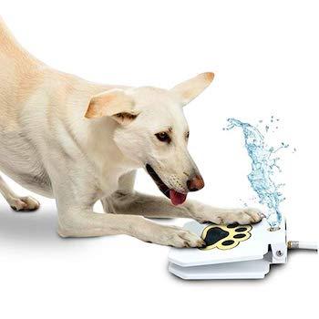 Trio Gato Step-on Outdoor Dog Water Fountain