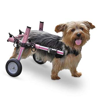 Walkin' Wheels Dog Wheelchair for Small Dogs | Veterinarian Approved