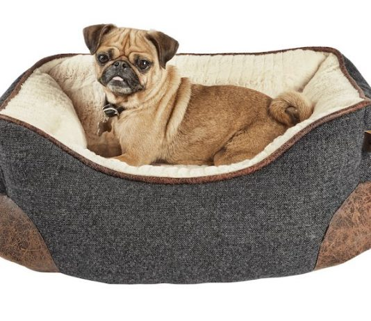 types of dog beds