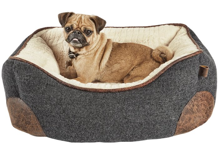 The 9 Types Of Dog Beds For Your Pooch Pet Loves Best