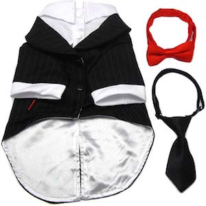 Tuxedo for Large Dogs