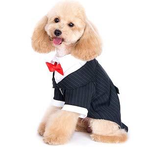 Alfie Oscar Formal Tuxedo
