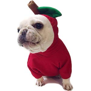 Amakunft Apple Pet Costume
