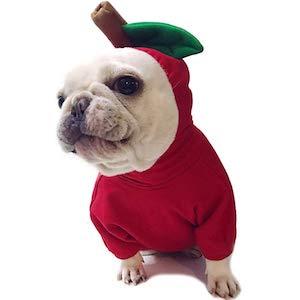 Amakunft Apple Pet Costume
