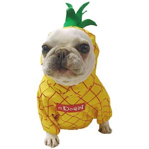 Amakunft Pineapple Pet Costume