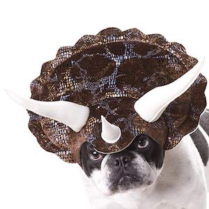 Animal Planet Triceratops for Dogs