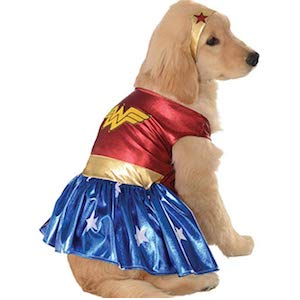 Wonder Woman Costume for Labrador