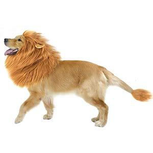CPPSLEE Halloween Lion Mane Wig Costume