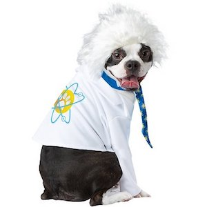 California Costumes Al-Bark Einstein Dog Costume
