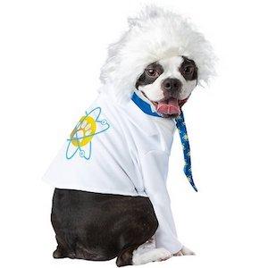 California Costumes Al-Bark Einstein Dog Costume