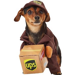 California UPS Delivery Driver Outfit