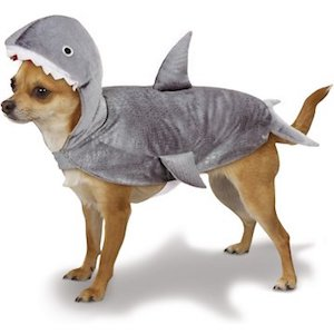 Casual Canine Shark Dog Costume