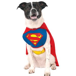 DC Comics Superman Cape Dog Costume