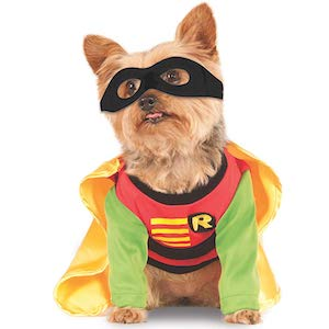 DC Comics Teen Titans Robin Outfit