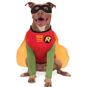 DC Comics Teen Titans Robin Pet Costume