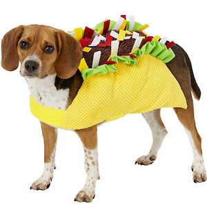 Frisco Taco Dog Costume