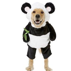 Frisco Walking Panda Dog Wear