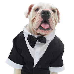 Lovelonglong Pet Costume Dog Suit Formal Tuxedo