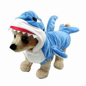 Shark costume for chihuahua